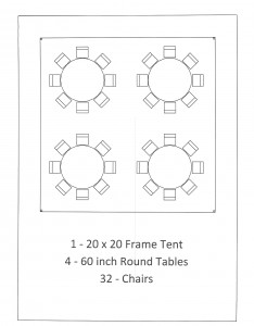 20x20 frame tent 60 inch table seating birthday party belleville mi