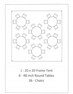 20x20 frame tent 48 inch table seating backyard bbq dearborn mi